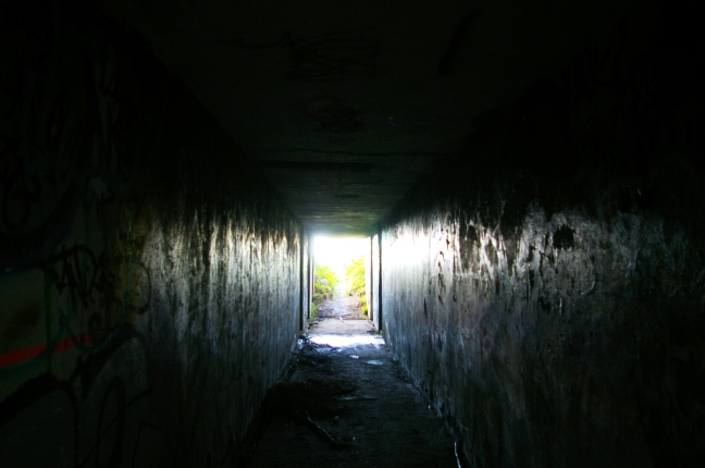 IMGP9183