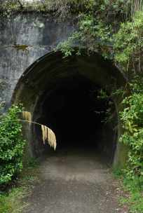 A disused rail tunnel looking in