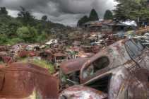 Car Graveyard