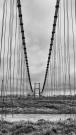 bridge7