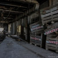 Last days in the old slaughterhouse