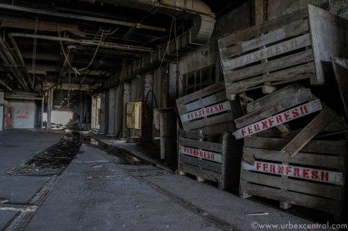Long Burn Abandoned Derelict Meat Works New Zealand