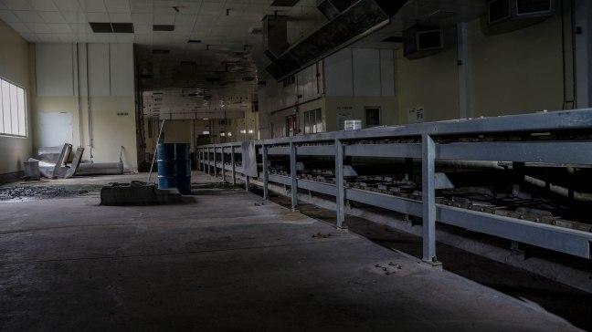 Conveyor belts.